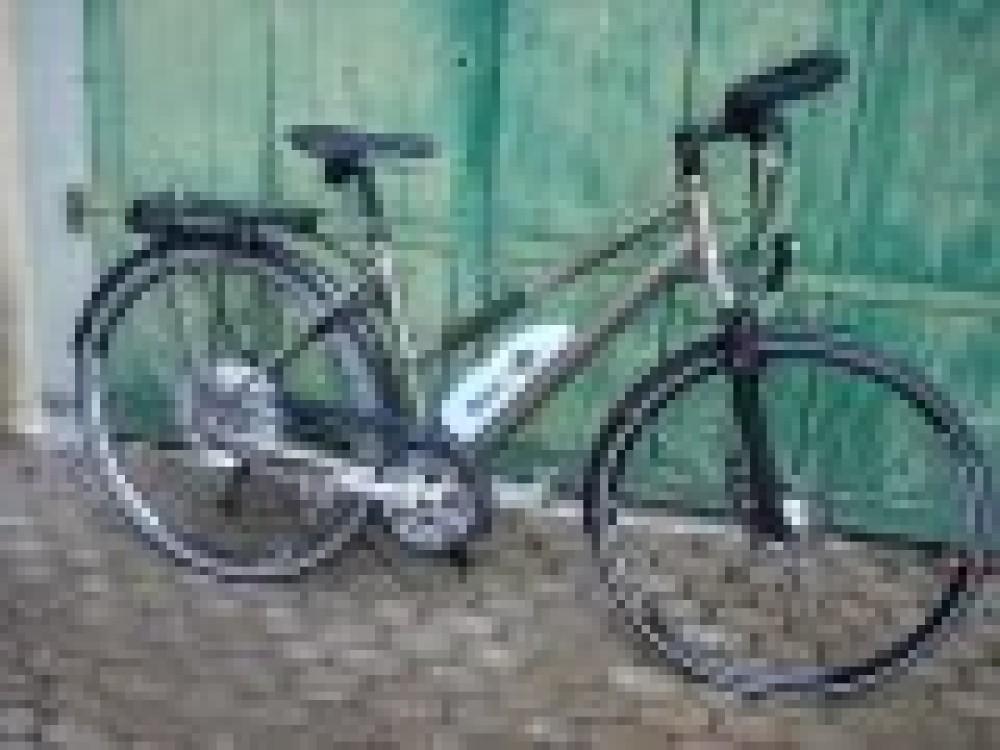 Bionx Pl250 light - petit, pas cher et léger - dispnible chez Easycycle !