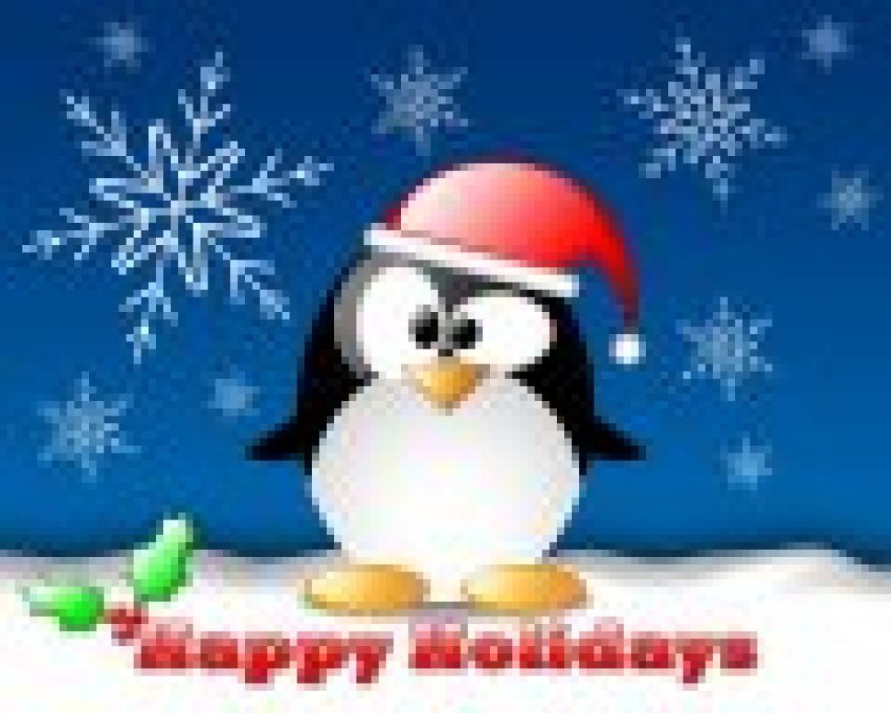 Vacances de Noël : du 25.12.2010 au 13.01.2011